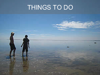 Things to do in Brittany